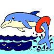 Omalovánka s delfínem